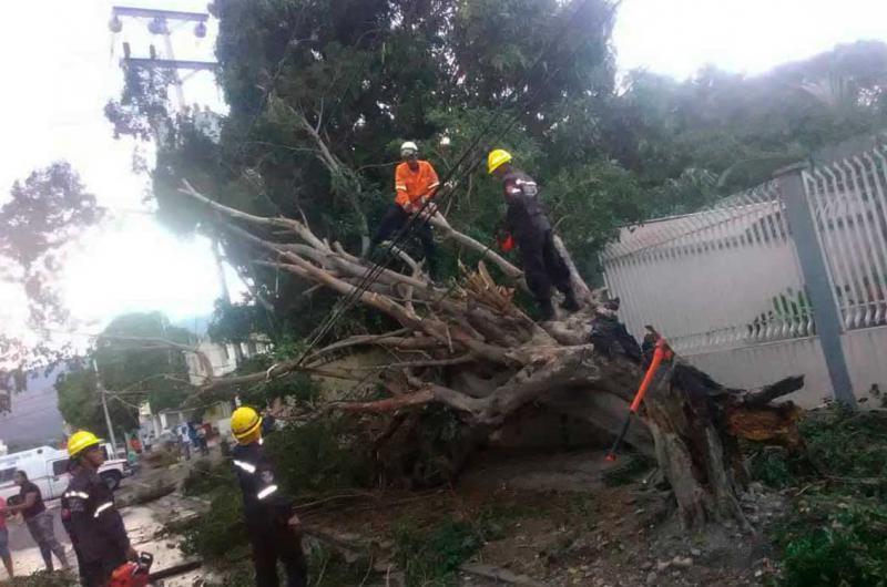 Ráfagas de vientos causaron daños en El Tocuyo - La Prensa de Lara